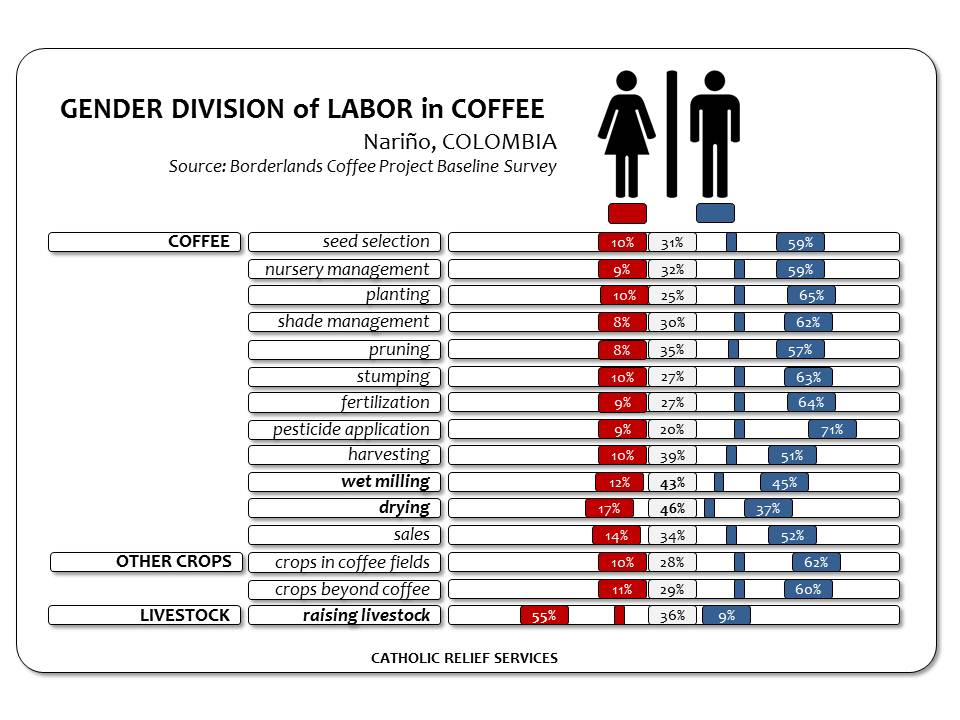 what is gender division of labour