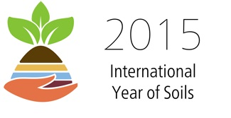Logo Int. Year of Soils