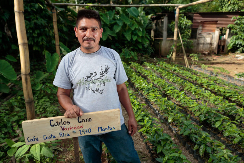 Carlos Cano, at a farmer-financed nursery in San Marcos, Guatemala. Photo by Oscar Leiva for CRS.