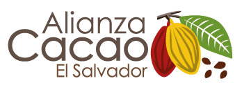 Cacao Agroforestry Systems – A Cost Benefit Analysis
